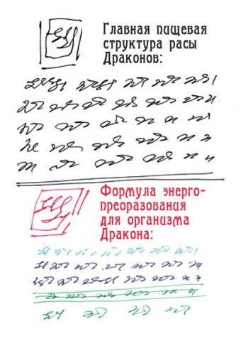 image16.jpg